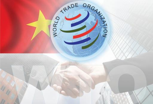 Vai trò của WTO
